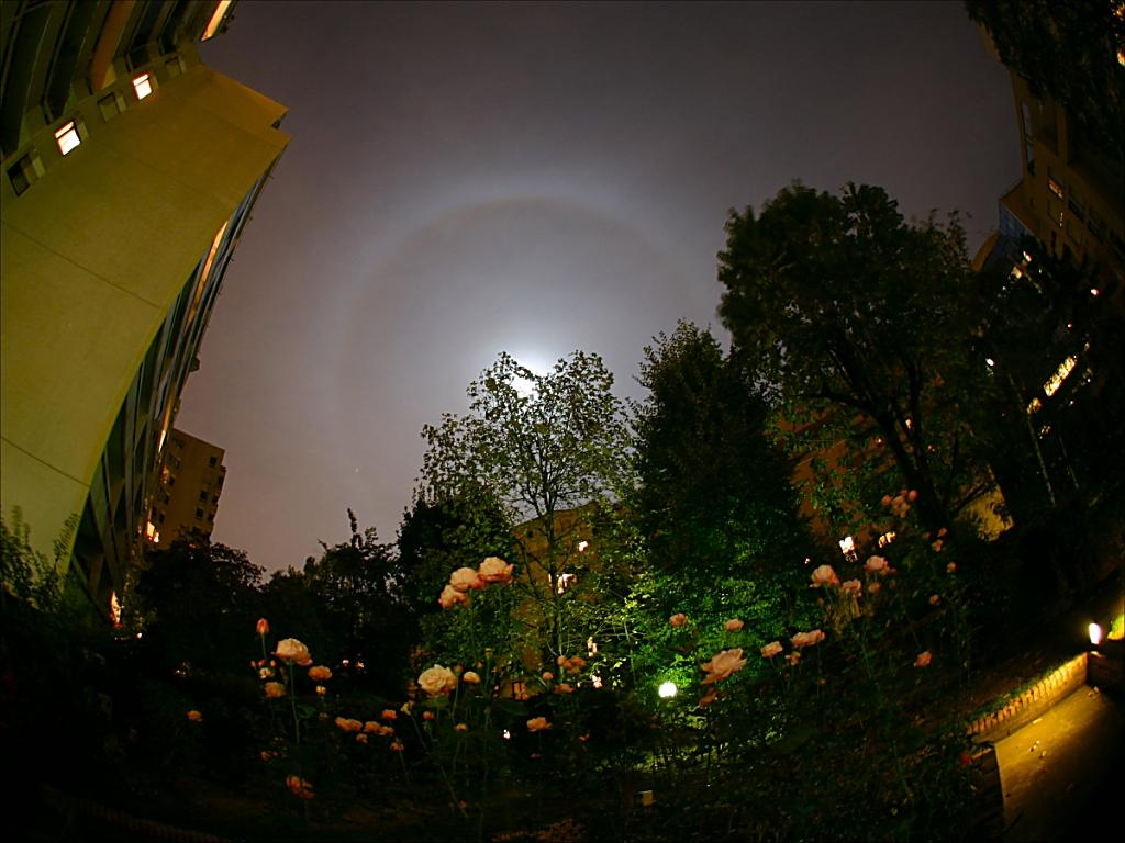 22° halo around full moon